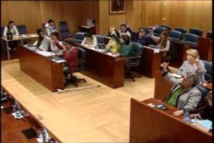 Asamblea_Madrid_MGF
